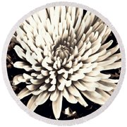 Round Beach Towel featuring the photograph Chrysanthemum In Sepia 2  by Sarah Loft