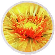 Chrysanthemum Round Beach Towel