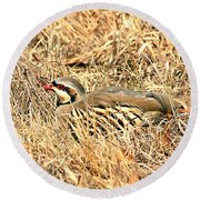 Chuckar Bird Hiding In Grass Round Beach Towel by Sheila Brown