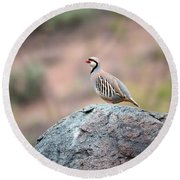 Round Beach Towel featuring the photograph Chukar Partridge 2 by Leland D Howard