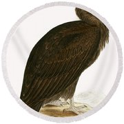 Cinereous Vulture Round Beach Towel by English School