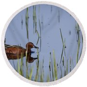 Cinnamon Teal Adult Male Round Beach Towel