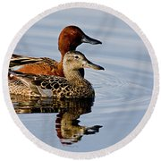 Cinnamon Teal Pair Round Beach Towel