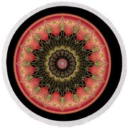 Circularium No 2659 Round Beach Towel by Alan Bennington