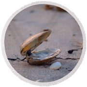 Clam I Round Beach Towel by  Newwwman