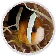 Clarks Anemonefish Round Beach Towel