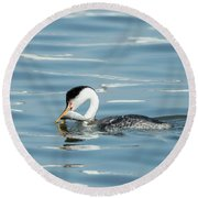 Round Beach Towel featuring the photograph Clarks Grebe by Everet Regal