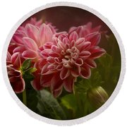 Round Beach Towel featuring the photograph Classic Dahlia 2016 by Richard Cummings