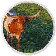 Classic Spring Scene In Texas Round Beach Towel by Gary Holmes