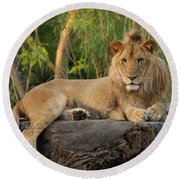 Classic Young Male Round Beach Towel