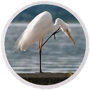 Cleaning White Egret Round Beach Towel