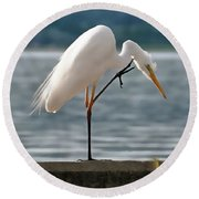 Cleaning White Egret Round Beach Towel
