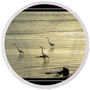 Clearwater Beach Round Beach Towel by Carolyn Marshall