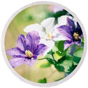Round Beach Towel featuring the photograph Clematis by Rachel Mirror