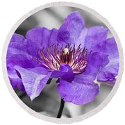 Clematis Round Beach Towel by Scott Carruthers