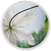 Round Beach Towel featuring the photograph Clematis Vine And Leaves by Michelle Calkins