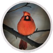 Round Beach Towel featuring the photograph Close Encounter On A Blustery Day by Lois Bryan