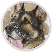 Close-up Of A Military Working Dog Round Beach Towel