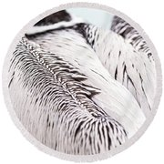Close-up Of Brown Pelican Round Beach Towel
