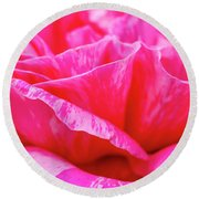 Close Up Of Variegated Pink And White Rose Petals Round Beach Towel