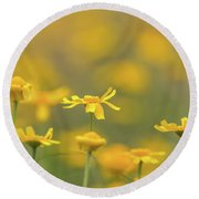 Close Up Of Yellow Flower With Blur Background Round Beach Towel