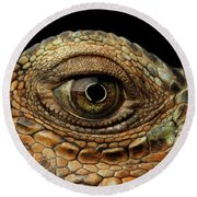 Closeup Eye Of Green Iguana, Looks Like A Dragon Round Beach Towel by Sergey Taran
