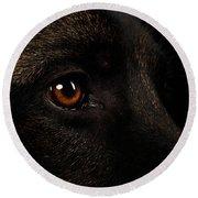 Closeup Eyes Of German Shepherd On Black Round Beach Towel by Sergey Taran