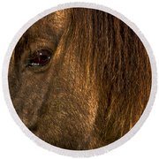 Closeup Of An Icelandic Horse #2 Round Beach Towel by Stuart Litoff