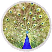 Closeup Of Peacock Displaying Train Round Beach Towel