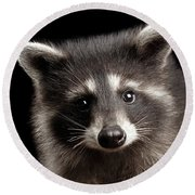 Closeup Portrait Cute Baby Raccoon Isolated On Black Background Round Beach Towel