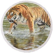 Round Beach Towel featuring the photograph Closing In by Alan M Hunt