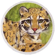 Round Beach Towel featuring the painting Clouded Cat by Jamie Frier