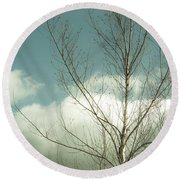 Round Beach Towel featuring the photograph Cloudy Blue Sky Through Tree Top No 2 by Ben and Raisa Gertsberg