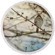 Round Beach Towel featuring the photograph Cloudy Finch by Trish Tritz