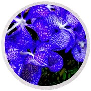 Cluster Of Electric Blue Vanda Orchids Round Beach Towel