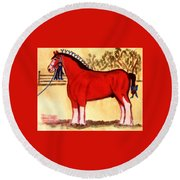 Clydesdale Horse Blue Ribbon Stallion Round Beach Towel