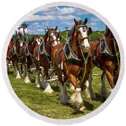 Budweiser Clydesdale Horses Round Beach Towel
