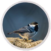 Round Beach Towel featuring the photograph Coal Tit's Colors by Torbjorn Swenelius