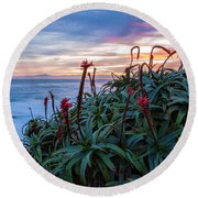 Coastal Aloes Round Beach Towel