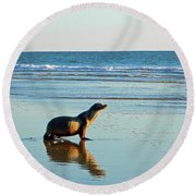 Coastal Friends Round Beach Towel