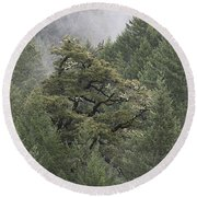 Round Beach Towel featuring the photograph Coastal Mountain Landscape by Jennifer Muller