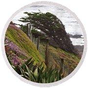 Coastal Windblown Trees Round Beach Towel