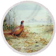 Cock Pheasant  Round Beach Towel by Carl Donner