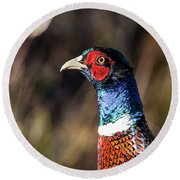 Round Beach Towel featuring the photograph Cock Pheasant In Fall by Torbjorn Swenelius