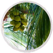 Coconuts Round Beach Towel