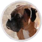 Cody The Boxer Round Beach Towel by Belinda Lee