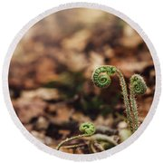 Coiled Fern Among Leaves On Forest Floor Round Beach Towel