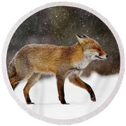 Cold As Ice - Red Fox In A Snow Blizzard Round Beach Towel