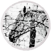 Cold Horse Round Beach Towel