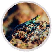 Collared Lizard Round Beach Towel by Tamyra Ayles